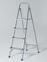 Domestic ladder
