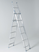 3in1extension-ladder